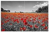 Wallario Herdabdeckplatte/Spritzschutz aus Glas, 2-teilig, 80x52cm, für Ceran- und Induktionsherde, Motiv Mohnblumenfeld- Rote Blumen in schwarz-weiß Fotografie