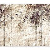 murando - Fototapete 400x280 cm - Vlies Tapete - Moderne Wanddeko - Design Tapete - Wandtapete - Wand Dekoration - Vogel Stein Wald b-C-0001-a-c