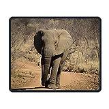 Mauspad Wildes Afrika Elephant.JPEG Büro Rechteck Rutschfester Gummi Mousepad Spaß-Gaming-Mauspad für Laptops Computer überwacht Tablets Tastaturen