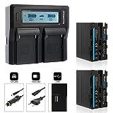 Blumax 2X Akku NP-F970 / NP-F960 LG Zellen 7850mAh + Doppelladegerät Dual Charger | passend zu NP-F750 NP-F550 NP-F990 || 2 Akkus gleichzeitig Laden