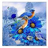Hukz 5D Blau Vogel Diamant Full Malerei, Diamant Zeichnung DIY Stickerei Painting Kreuz Stich Diamond Dekoration Blumen (Prinzessin, 30 * 40cm) (Blau)