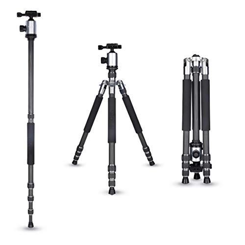 Rollei Allrounder Carbon Stativ I Titan I Kamera-Stativ I Reisestativ mit Kugelkopf inkl Monopod Arca-Swiss Schnellwechselplatte Stativtasche 164 cm