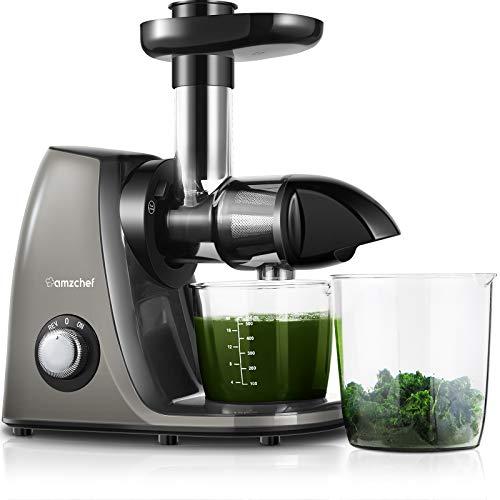 AMZCHEF Professioneller Slow Juicer, Entsafter für Obst/Gemüse, Zwei Geschwindigkeiten, Geräuschloser Motor≤60dB, Reinigungsbürste und Saftkrug Einschließen, (150 Watt/Silbergrau)