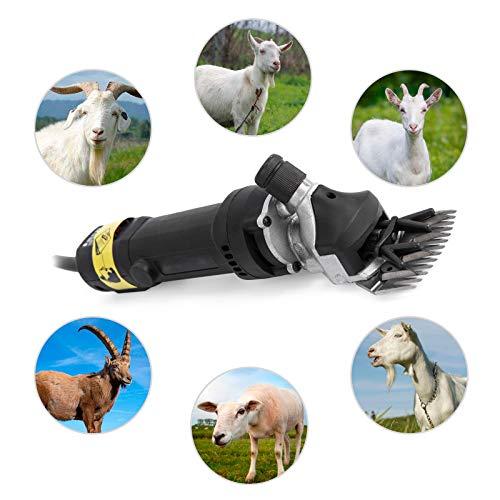 Buaqua schwarz Schafschere 550W Elektrische Schafschermaschine 2400RPM Wool Scissors Sheep Shearing Machine Sheap Clipper (550W)