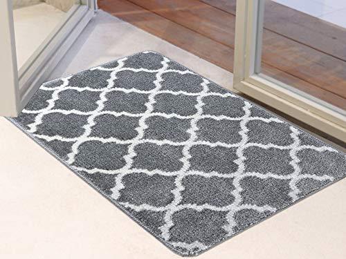 Famibay Fußmatte Waschbar Grau Schmutzfangmatte Eingangsbereich Innen Fussmatte Wasserabsorbierend Gummi Fußabstreifer Teppich rutschfest Türmatte für Haustür Eingangstür