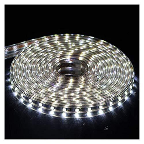 5050 Strip Outdoor wasserdicht 5050 Strip 5050 Strip Light 10M 20M 25M LED-Streifenleuchten mit Fernbedienung (Emittierende Farbe: Weiß)