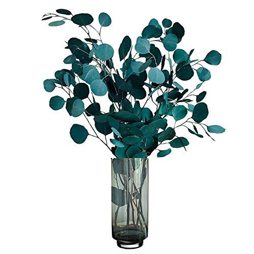 Lzfitpot Eukalyptus Trockenblumen Echt, Luxus Getrocknet Blumen Deko, Natürlich Dried Flower Bouquet Decoration Trockenblumenstrauß für Haus/Büro/Hochzeit/Decor/Fotografie, Blau