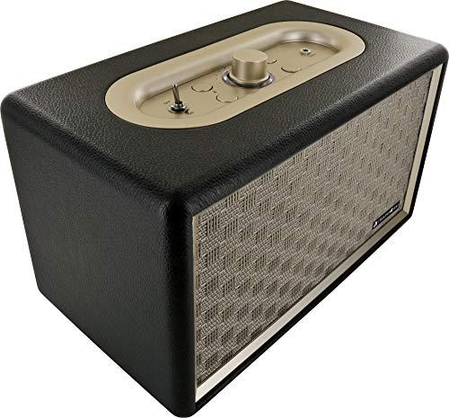 SCHWAIGER -661705- Bluetooth Lautsprecher 24 W im Retro Design, kabellos und tragbar mit 2200 mAh Akku wiederaufladbar
